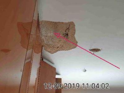 רטיבות מהגג בדירה יד שנייה - מהנדס בודק דירות יד שנייה